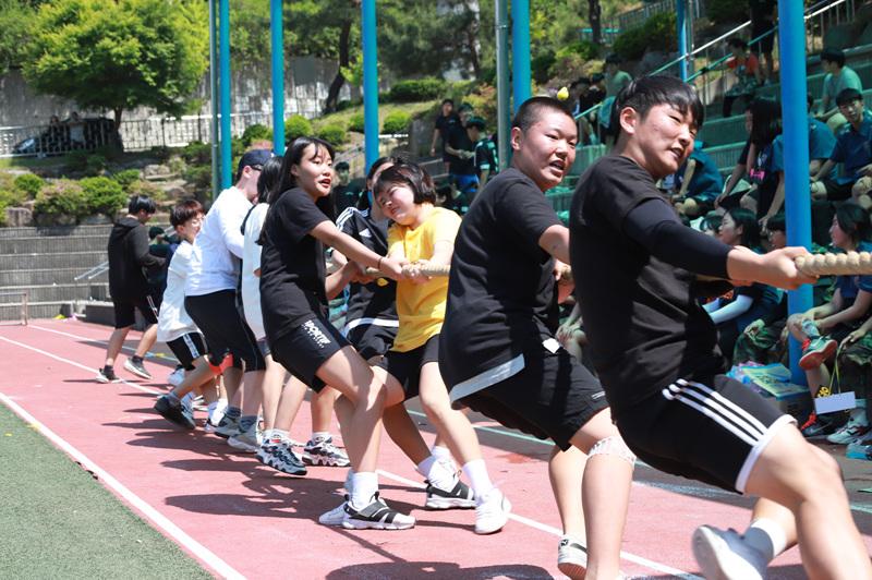 [일반] 2019년 체육대회의 첨부이미지 9