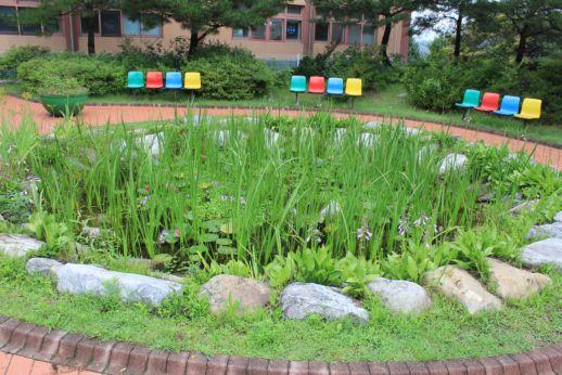 [일반] 연못에 아름다운 꽃들이 만발!의 첨부이미지 1