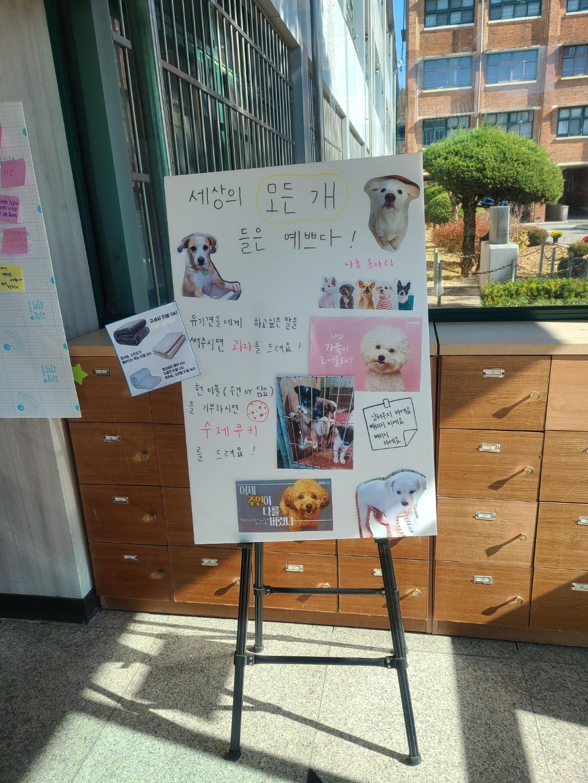 [일반] 동아리 '나눔' 유기견 헌이불 기부하기 캠페인의 첨부이미지 2